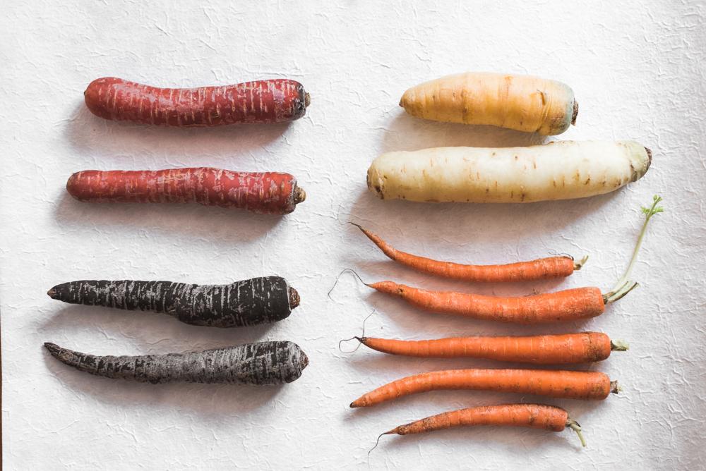 Karotten in vielen Farben