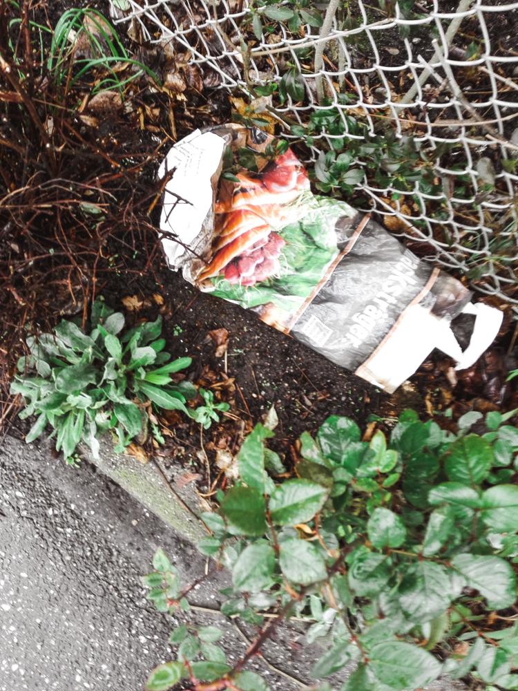 Umweltzerstöung durch unseren Müll