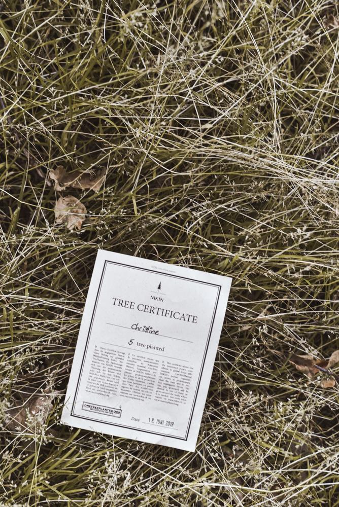 Wie man nachhaltige Mode kaufen und gleichzeitig einen Baum pflanzen kann?