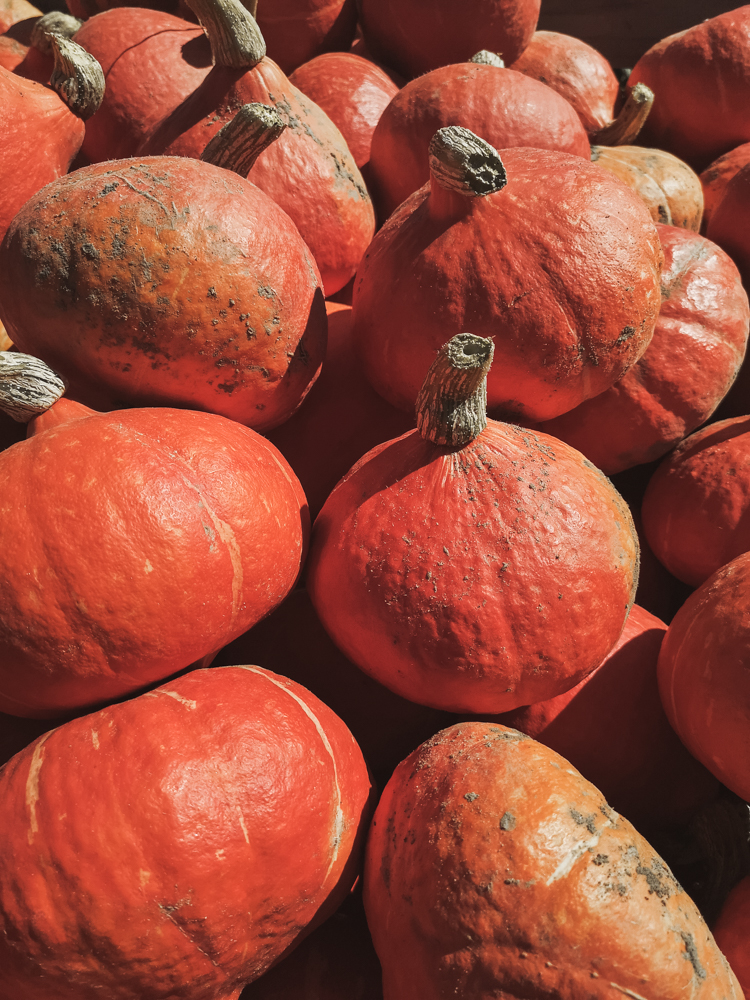Rezept Herbstliches Kürbisbrot selber backen