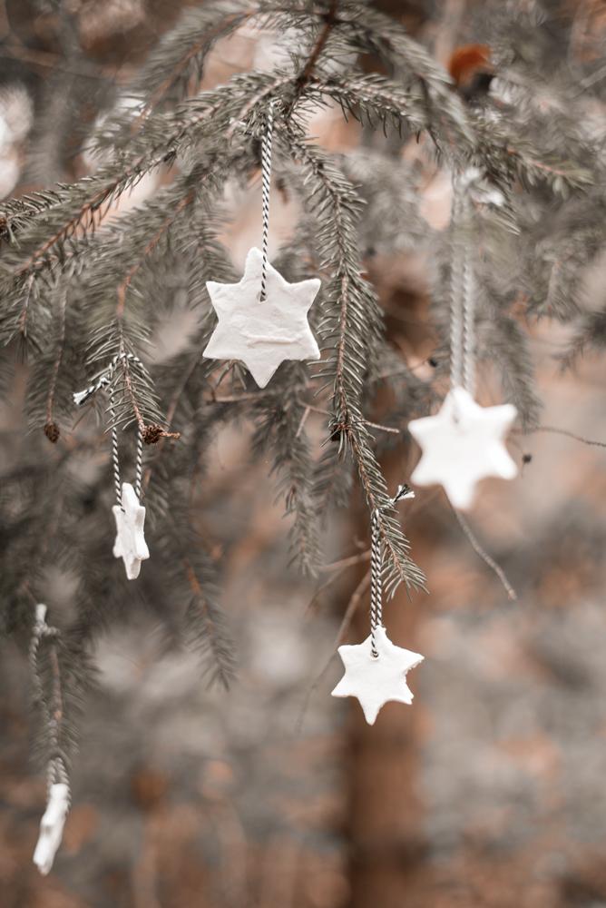 Nachhaltiger Weihnachtsbaum - geht das überhaupt? Ich habe Vor- und Nachteile von Weihnachtsbäumen und Alternativen zusammengestellt. #weihnachten #weihnachtsbaum #nachhaltigkeit