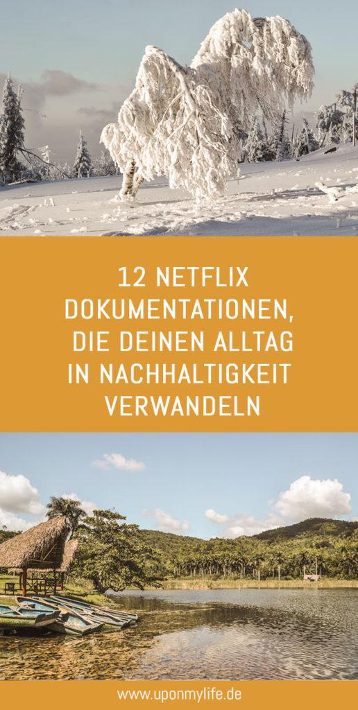 In letzter Zeit bin ich immer süchtiger nach Dokumentationen geworden. Daher habe ich dir meine Top 10 der nachhaltigen Netflix-Dokumentationen notiert. #netflix #film #nachhaltigkeit