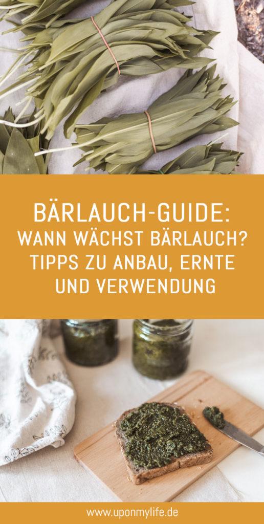 Bärlauch-Guide: Wann wächst Bärlauch? Tipps zu Anbau, Ernte und Verwendung zeige ich dir. Damit du sicher wilden Bärlauch ernten kannst. #bärlauch #selbstversorger #ernten #rezept