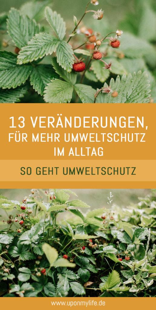 Umweltschutz im Alltag: 13 gute Veränderungen, die wir für unsere Umwelt tun können - ganz einfach können wir so etwas für den Umweltschutz tun #nachhaltigkeit #umweltschutz #weltumwelttag
