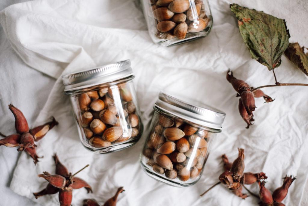 Haselnüsse werden oft unterschätzt. Über Inhaltsstoffe der Haselnüsse, Erntezeitpunkt, die richtige Lagerung und fünf leckeren Rezeptideen