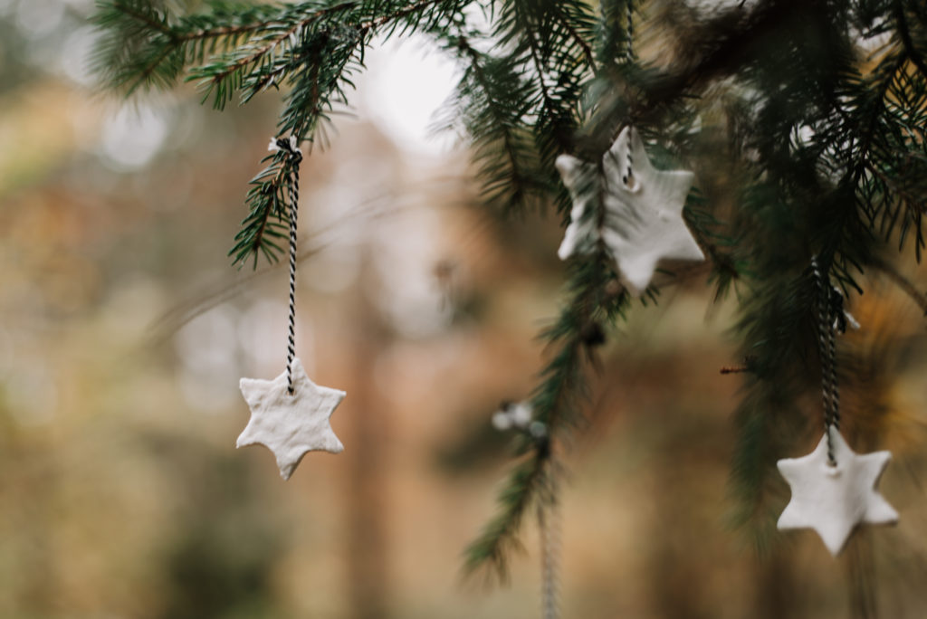 Seid dabei: Nachhaltiger Adventskalender 2020! Jetzt Anmelden & 24 Türchen kostenlos per Mail erhalten für dein nachhaltiges Weihnachtsfest